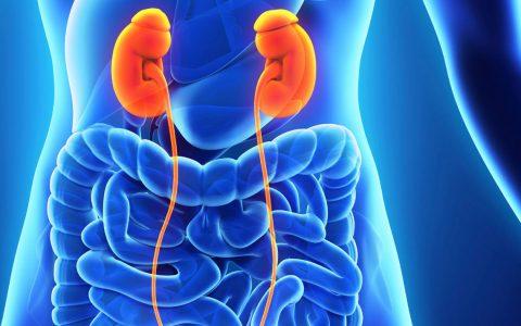 Tumores de Adrenal (Supra-renal)